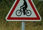 ciclista olandese rischia per puntura di imenottero