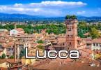 Visita allergologica Lucca