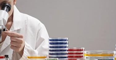 Ricerca giapponese su allergia alimentare e dermatite atopica