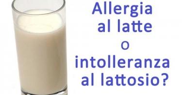 allergia al latte o intolleranza al lattosio