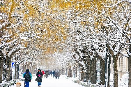 allergie in inverno