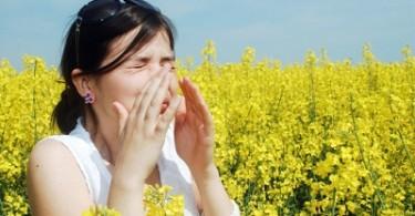 i ritmi circadiani delle allergie