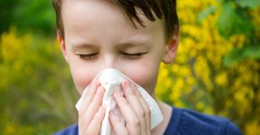 Rinite allergica nei bambini